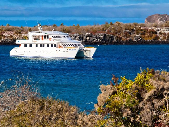 Anahí Galapagos Cruise